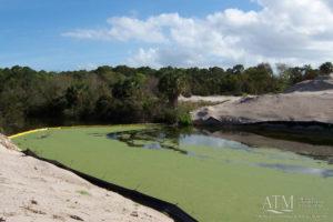 Palm Coast Plantation Permitting & Environmental