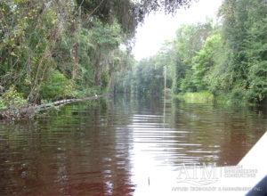 Cover Alligator Lake Flood Abatement