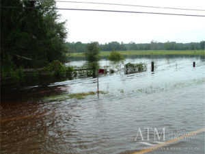Alligator Lake flooding