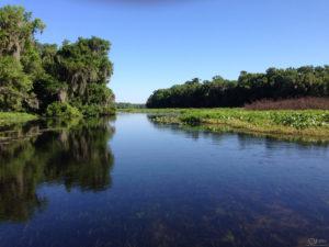 Wekiva River WRV Assessment
