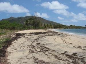 Park Hyatt Range Developments, St. Kitts