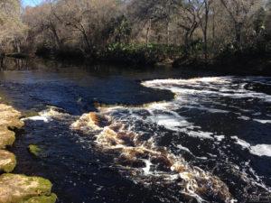 Steinhatchee River Minimum Flows and Levels