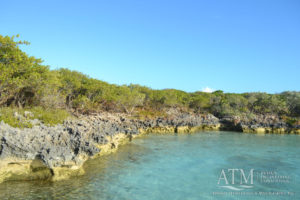 Children's Bay Cay Environmental Impact Assessment